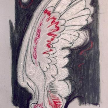 krilo pastel mali
