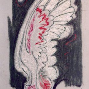 Slika 'Krilo'